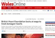 Wales Online BHF Article