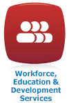 Workforce (WEDS) Icon Eng